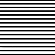 Black & White Stripe (BWS)