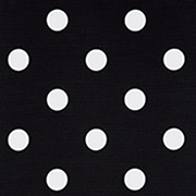 Black & White Dot (BWD)