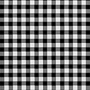Black & White Gingham (BWG)