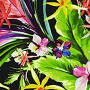 Maui Vibes  (MVB)