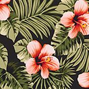 Polynesian Perfection (POC)