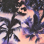 Sunset Palms (SUM)