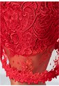 Alternate view Lace Bodycon Dress