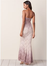 Back view Ombre Lace Long Dress