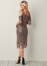 Back View Fringe Detail Lace Dress