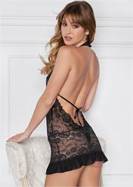 Back view Deep V Sheer Lace Negligee
