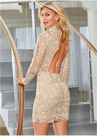 Back View Open Back Lace Dress