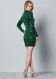 BACK VIEW Sequin Detail Velvet Dress