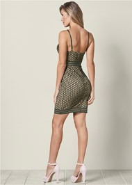 Back view Lace Detail Bodycon Dress