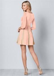 Back View Glitter Sweater Dress