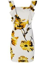 Alternate View Floral Print Ruffle Dress