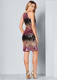 Back View Sequin Ombre Dress