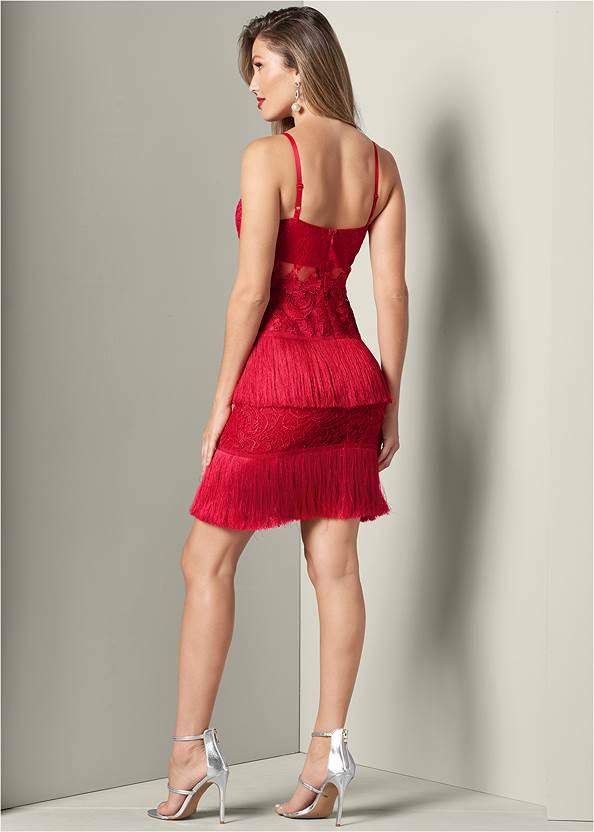 Full back view Fringe Detail Lace Dress