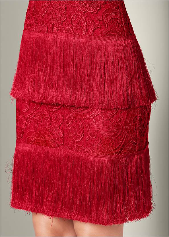 Detail  view Fringe Detail Lace Dress