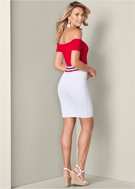 Back View Color Block Ribbed Dress