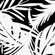 Monochrome Palms (MPM)