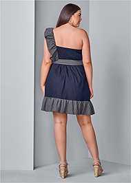 Back View Ruffle Detail Denim Dress