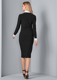 Back View Collar Detail Dress