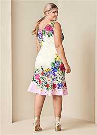 Back View Ruffle Trim Detail Dress