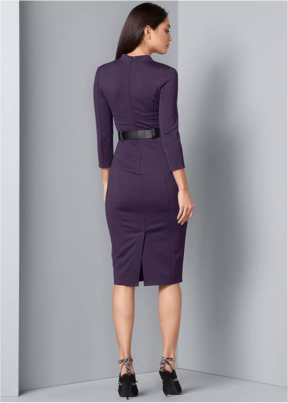 Alternate View Belted Dress
