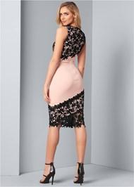Back View Lace Detail Dress