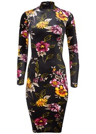 Alternate View Floral Printed Velvet Dress
