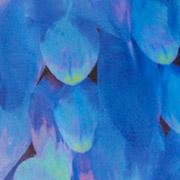 Blue Petals (UPL)