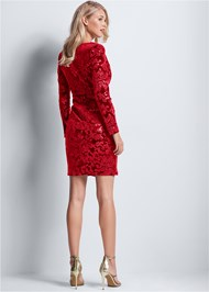 Back View Sequin Velvet Detail Dress