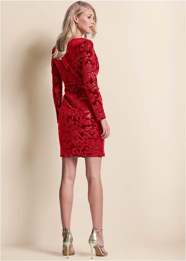 Back View Sequin Velvet Detail Dress