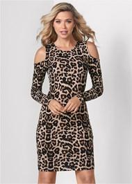 Front View Leopard Print Dress