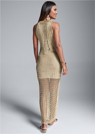 Back View Metallic Crochet Dress