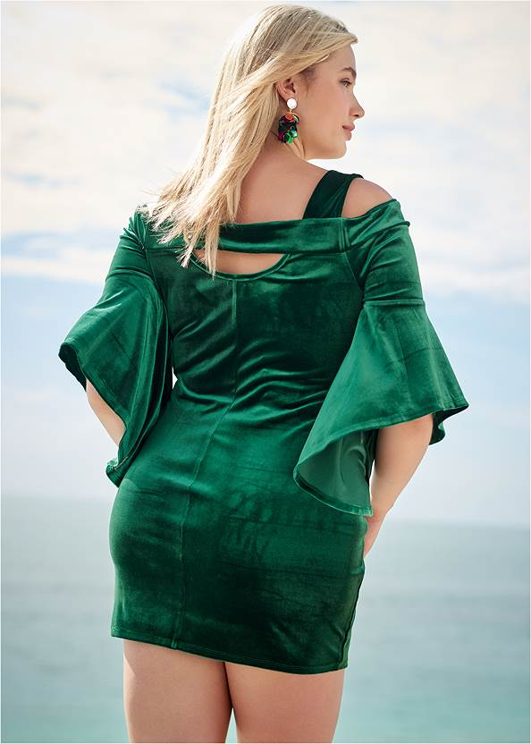 Back View Velvet Sleeve Detail Dress