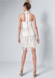 Full back view Faux Leather Fringe Dress
