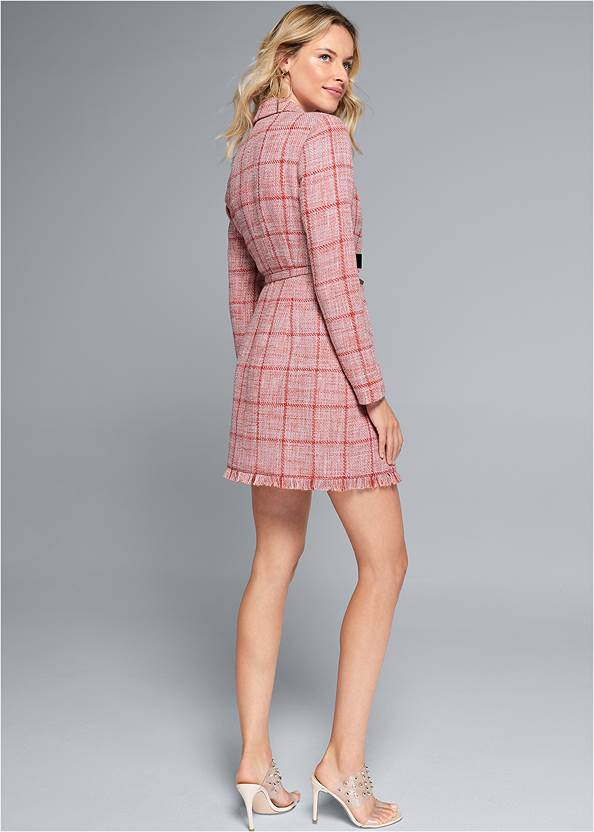 Back View Tweed Coat Dress