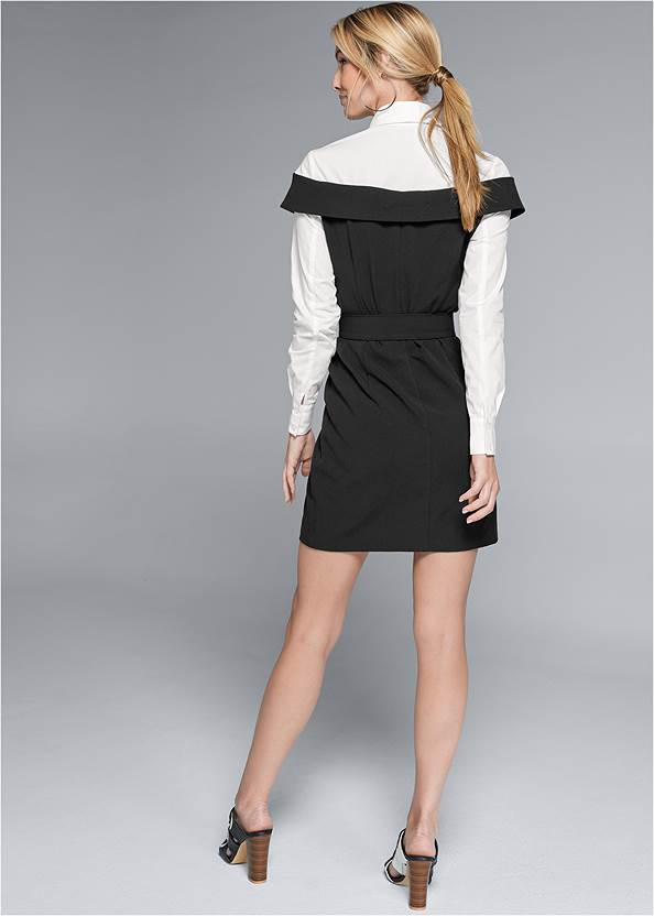 Back View Twofer Button Front Dress