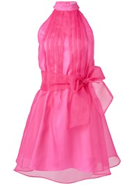 Ghost with background  view Sleeveless Organza Dress
