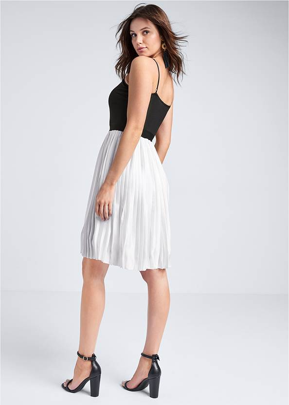 Full back view Color Block Pleated Dress