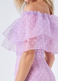 Alternate View Organza Polka Dot Dress