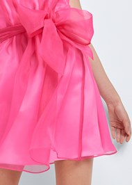 Alternate View Sleeveless Organza Dress