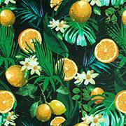 Simply Citrus (SYC)