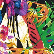 Wild Tropics (WTP)