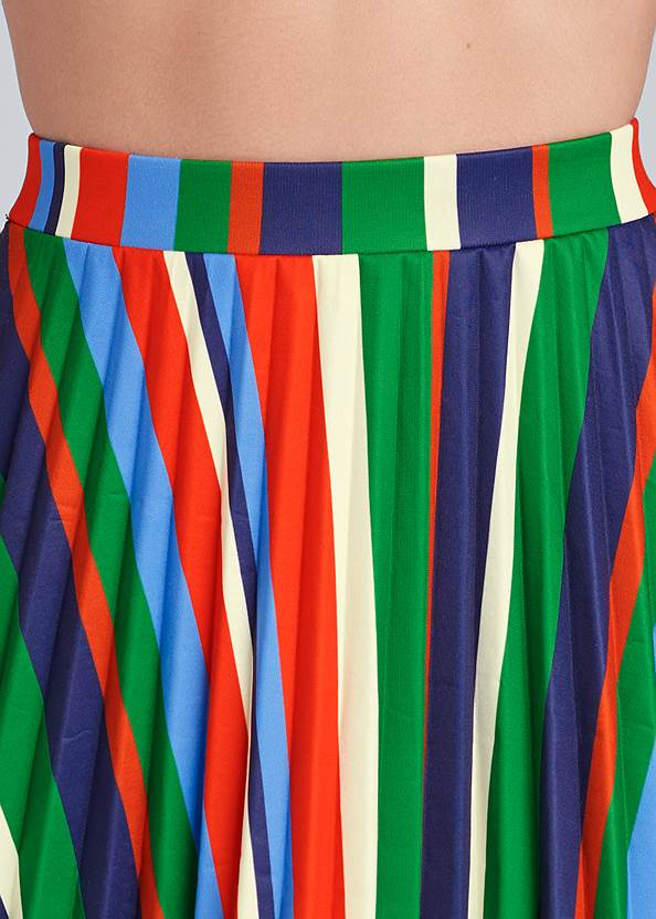 Detail front view Multi Stripe Pleated Skirt