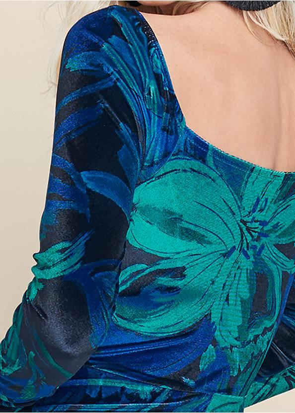 Alternate View Floral Print Velvet Dress