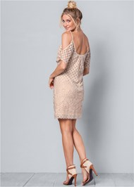 Back View Cold Shoulder Lace Dress