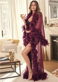 Cropped front view Sheer Mesh Robe