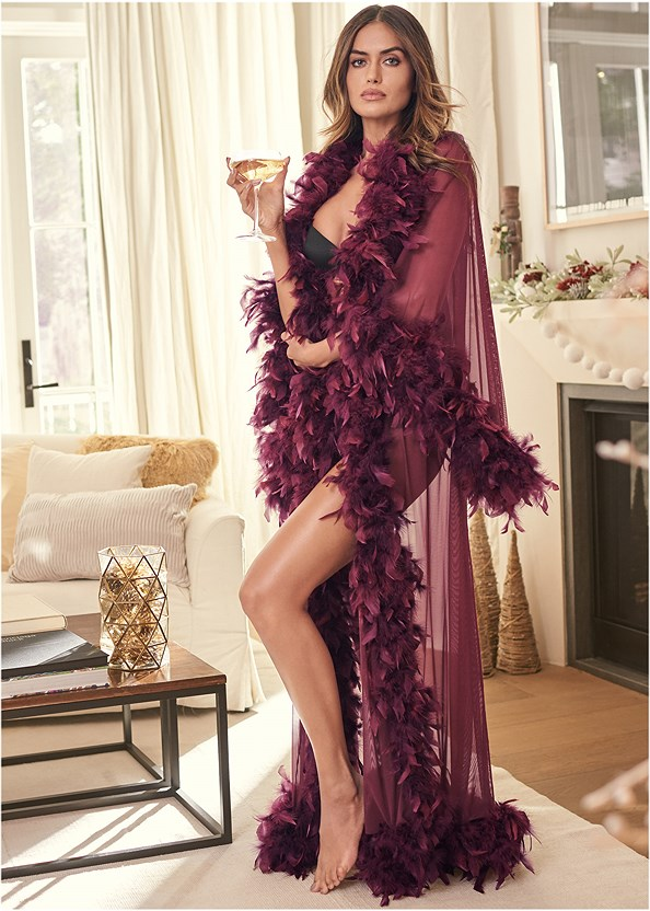 Sheer Mesh Robe,Push Up Bra Buy 2 For $40