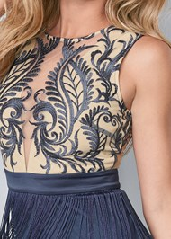 Detail front view Embroidered Fringe Dress