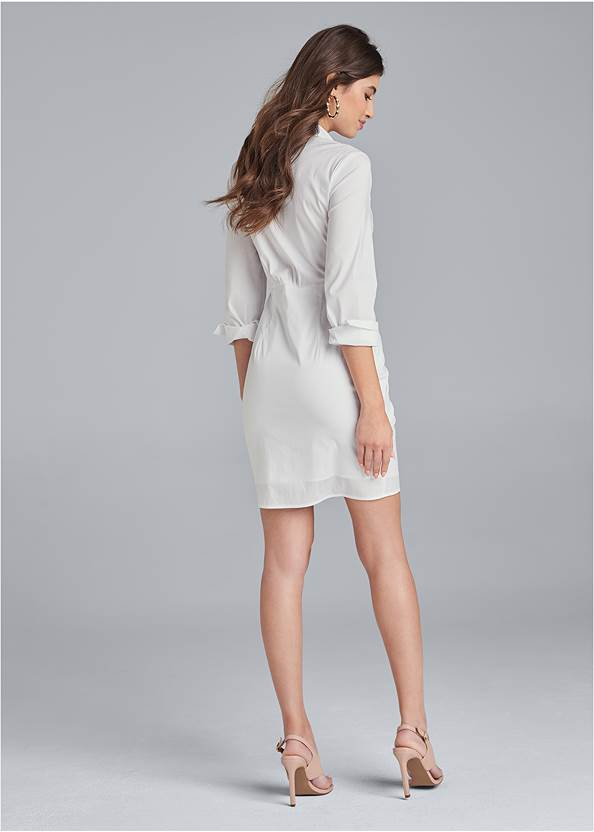 Alternate View Collared Mini Dress