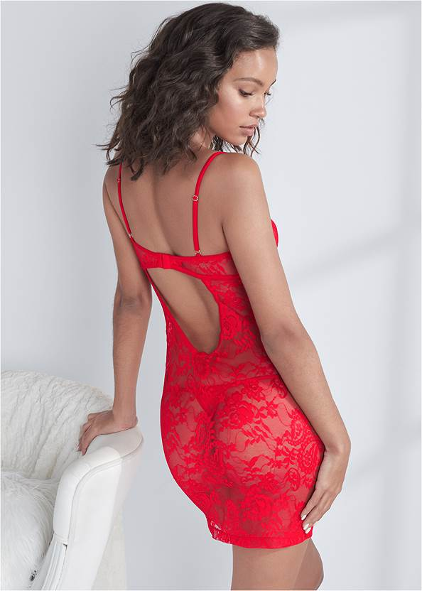 Back View Sheer Floral Lace Negligee